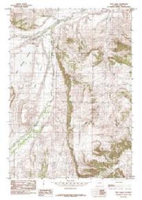 7.5' Topo Map of the Iron Creek, WY Quadrangle