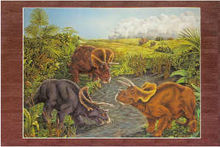 Triceratops (postcard) (1995)