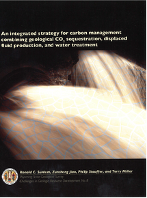 Integrated Strategy for Carbon Management Combining Geological CO2 Sequestration, Displaced Fluid Production and Water Treatment (2009)