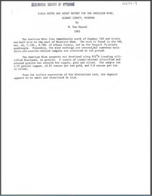 Field Notes and Assay Report for the American Mine, Albany County, Wyoming (1983)