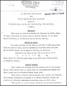 A Brief Report on the Bucaneer Group near Sherman, Albany County, Wyoming (1907)