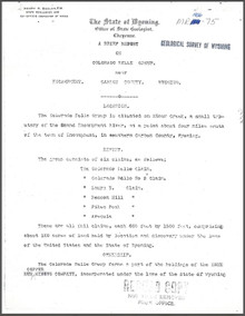 A Brief Report on Colorado Belle Group near Encampment, Carbon County, Wyoming (1906)
