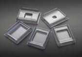 Disposable Base Molds, 24x24x5mm, 500 pcs/pack