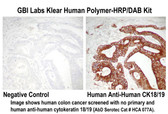 Klear Human HRP-Polymer with DAB Kit 18 ml