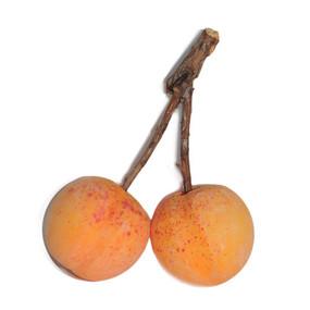 Italian Alabaster Apricot Duo