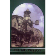 The Widow's Son and other stories (Paperback)