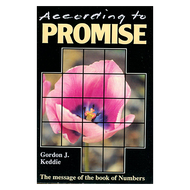 According to Promise by Gordon Keddie (Paperback)