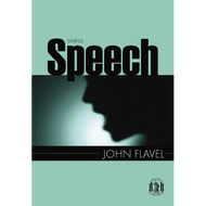 Sinful Speech by John Flavel (Paperback)