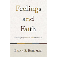 Feelings & Faith by Brian Borgman (Paperback)