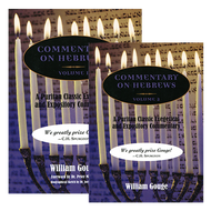 Commentary on Hebrews 2 Volume Set by William Gouge (Hardcover)