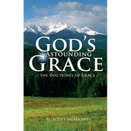 God's Astounding Grace by D. Scott Meadows (Booklet)