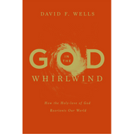 God in the Whirlwind by David F. Wells (Hardcover)