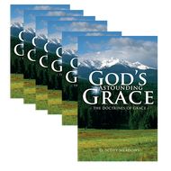 God's Astounding Grace by D. Scott Meadows | Bundle of 25 (Booklet)