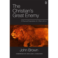 The Christian's Great Enemy by John Brown (Paperback)