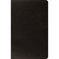 ESV Large Print Thinline Bible (Genuine Leather, Black)