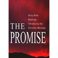 The Promise by Alec Taylor (Paperback)