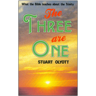 The Three Are One by Stuart Olyott (Paperback)