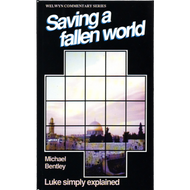 Saving a Fallen World by Michael Bentley (Paperback)