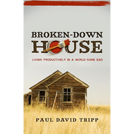 Broken-Down House by Paul David Tripp (Paperback)