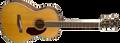 Fender PM-2 Parlour Electro Acoustic Guitar