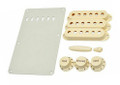 Fender Stratocaster Aged White Access Kit