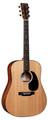 Martin D-10E Electro Acoustic Guitar