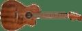 Fender Newporter Special with Gig Bag, All Mahogany, Natural