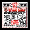 Ernie Ball 5 string banjo custom gauge string set light gauge