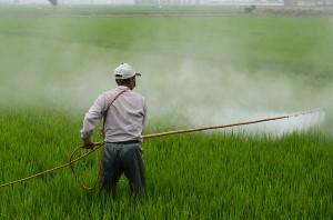 pesticide.jpg