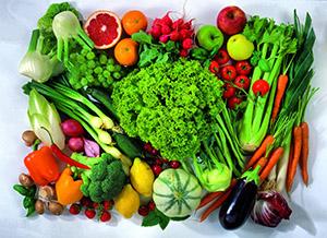 vegetarianr.jpg