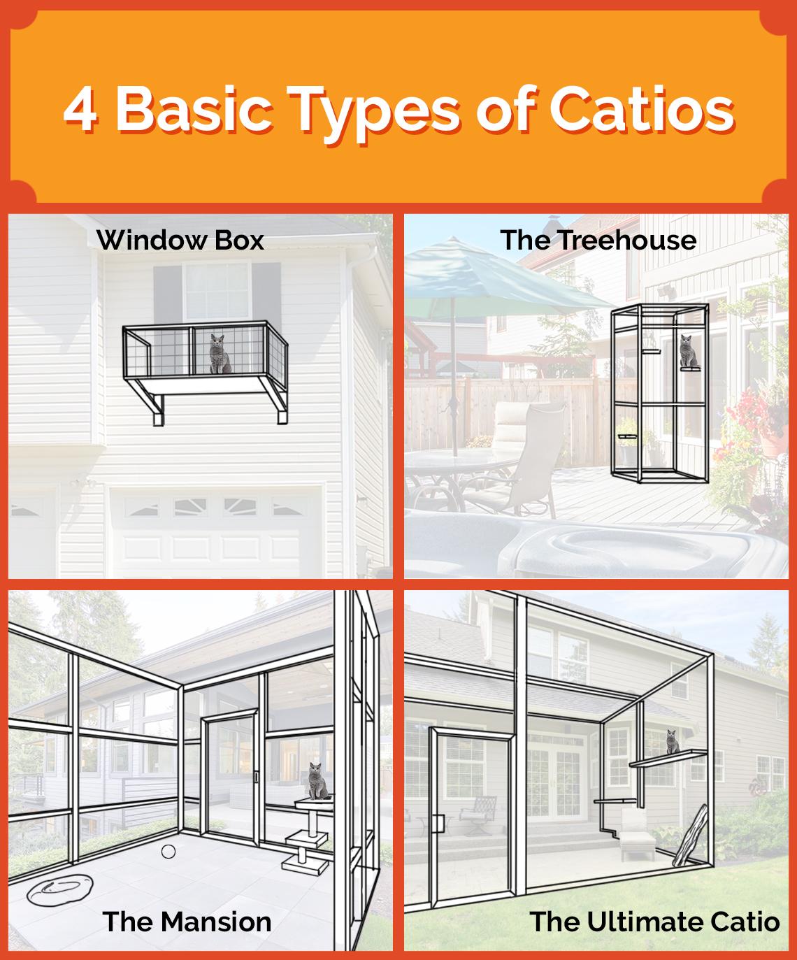 4-basic-types-of-catios.jpg