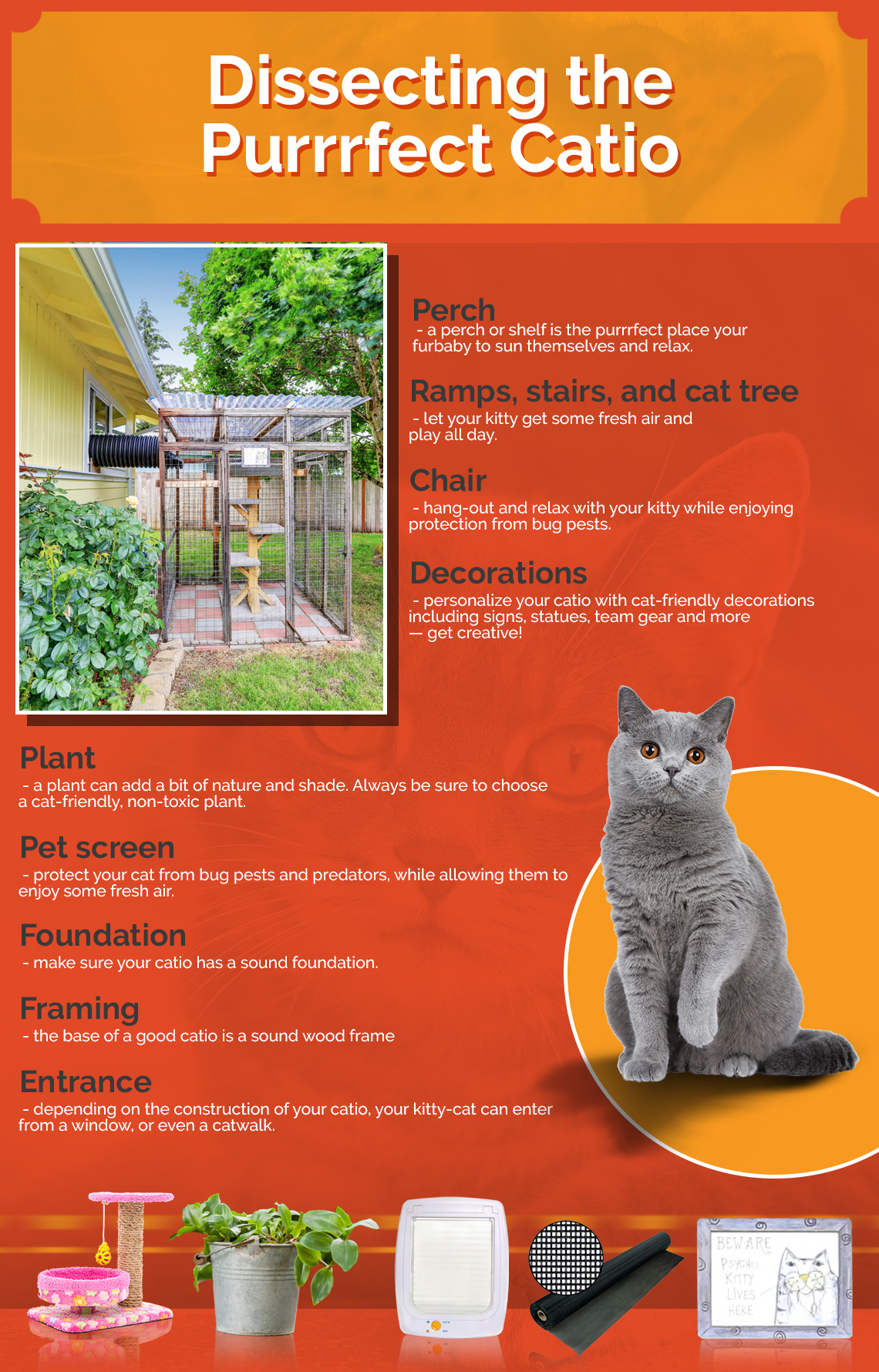 dissecting-the-purrrfect-catio-info.jpg