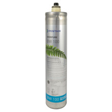 Everpure BW100 Filter Cartridge