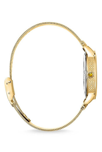 Thomas Sabo Women's Watch Garden Spirit Tiger's Eye Gold TWA0364