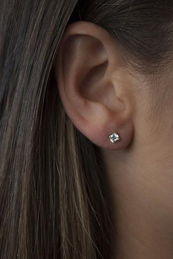 Bianc CZ Claw Set Stud Earrings 10100311