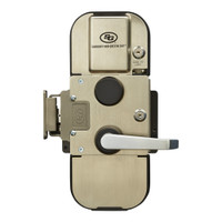 Type II, GSA, Access Control Capable, Lever Exit, Kaba X-10 Lock