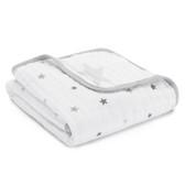 Aden + Anais Classic Stroller Blanket 1 pk (More Prints)