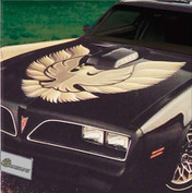 OEM Pontiac BIRD Decals and Graphic Kit '73 '81 Trans Am