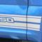 F-150 ROCKER TWO : Ford F-150 Lower Rocker Panel Stripes Vinyl Graphics and Decals Kit for F-Series F-150 Models (M-PDS3526) - CUSTOMER PHOTO 4