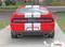 Dodge Challenger Hellcat SRT Racing Stripes AIRSHOT RALLY : Vinyl Graphics Bumper to Bumper Decals fits 2015-2019 - Customer Photos