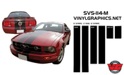 05-09 Mustang Dual Rounded Rally Stripes