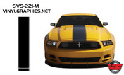 2013-14 Mustang Pinstripe Hood Kit