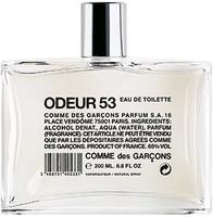 Odeur 53 Eau de Toilette Spray 200ml by Comme des Garcons.