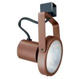 Line Voltage Gimbal Ring 75W PAR30 Bronze