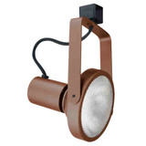 Line Voltage Gimbal Ring 150W PAR38 Bronze