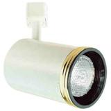 Line Voltage Flat Back Cylinder with Baffle 75W R30 / PAR30 Gold Ring White