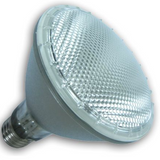 Halogen Lamp 10 Deg Spot PAR30 39W E26 Clear