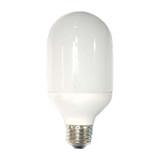 Compact Fluorescent T19 15W E26 6500K