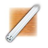 Fluorescent Linear T10 40W Medium Bipin 3500K