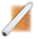 Fluorescent Linear T12 124W R17d 4100K
